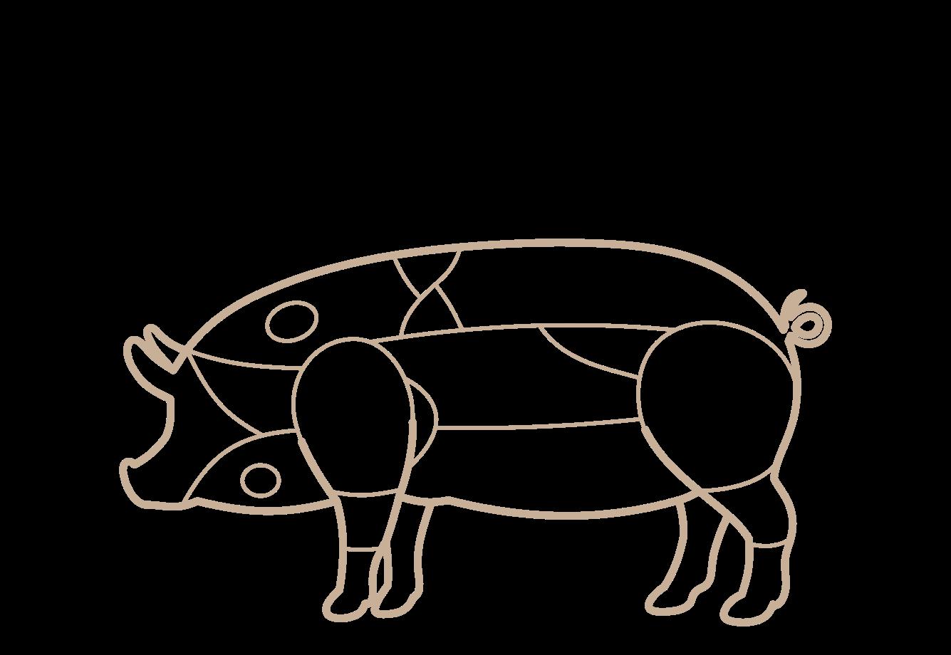 Tipo de corte de cerdo